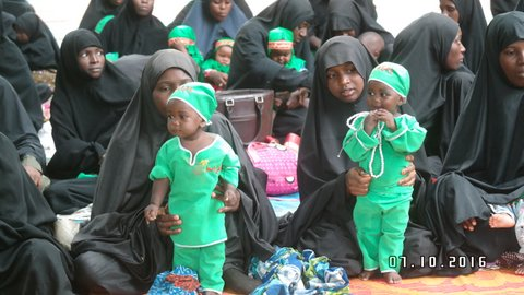 day of infantson ashura day 5 kano